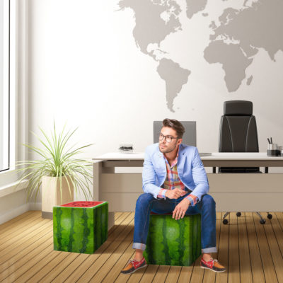 watermelon cube interior man seating office buy