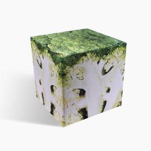 Broccoli cube seat