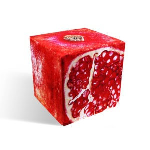 Pomegranate cube seat